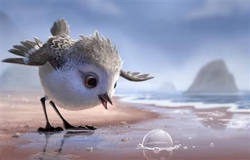 'Piper': El último corto de Pixar que enternecerá tu corazón