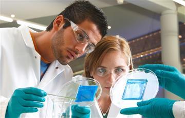 Fundación Bayer de Alemania ofrece 350 mil euros para becas