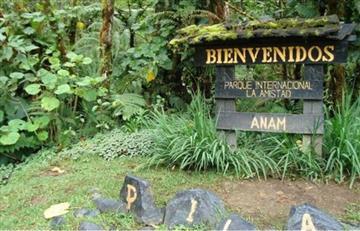 Buscan colombiana desaparecida en bosque de Panamá