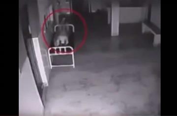 """El video que registra el momento en que el """"alma"""" abandona el cuerpo"""