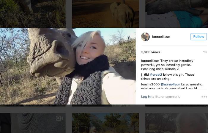 Rinoceronte huérfano muestra su amor a su cuidadora