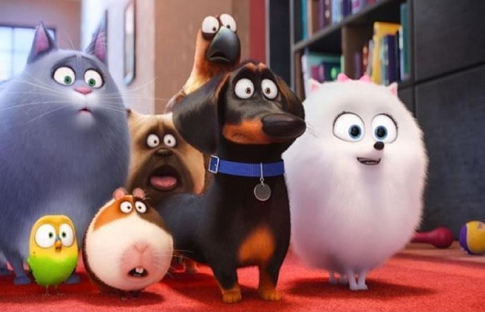 La Vida Secreta de tus Mascotas tendrá continuación en el 2018