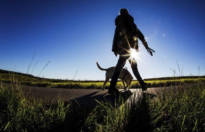 Cédula de ciudadanía para perros