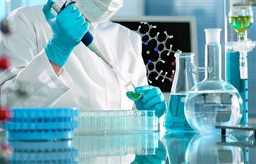 Nuevo compuesto frena la enfermedad renal causada por diabetes