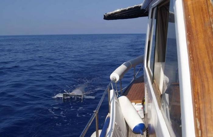 Mar Mediterráneo alcanza más de mil toneladas de residuos plásticos