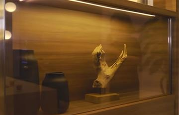 Panasonic presenta su televisor OLED invisible