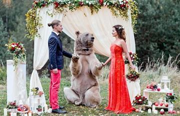 Facebook: Un enorme oso es el testigo de una boda
