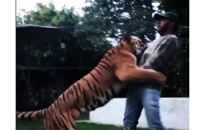 Lewis Hamilton es 'atacado' por un tigre
