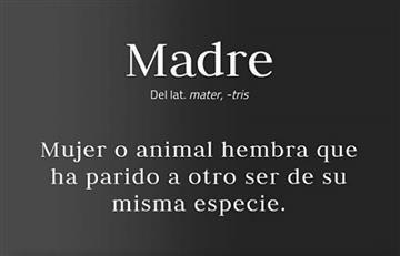 #UnaMadreEs Pide cambiar a la RAE la definición de 'madre'