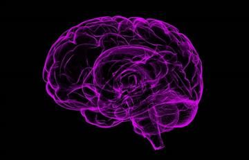 Sanan primer cerebro con realidad virtual
