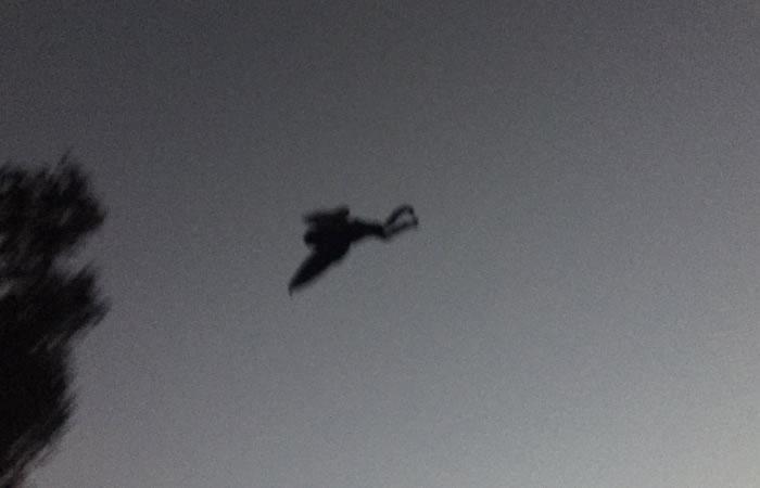 Estados Unidos: Desconocido humanoide aparece en su cielo
