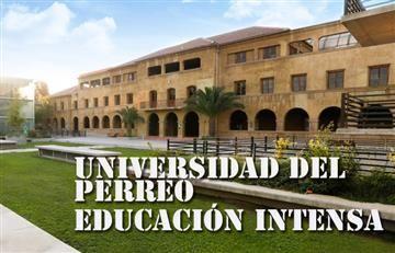 Pontificia Universidad del Perreo, una realidad para 2017