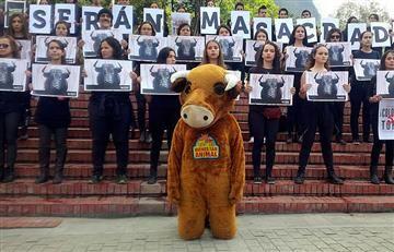 Así protestan las personas en contra de las corridas de toros