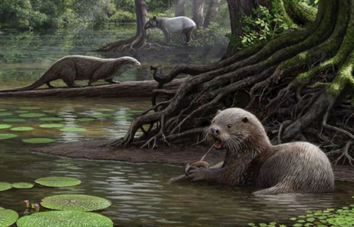 Descubren nutria prehistórica gigante