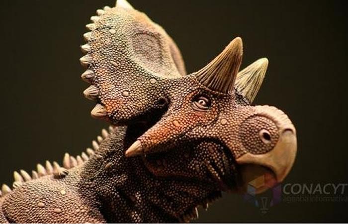 Hallan nuevo dinosaurio en México. Foto:EFE