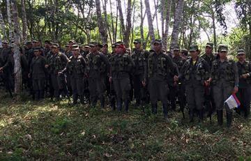 FARC: Cerca de 6.900 guerrilleros ya están en las zonas de desarme
