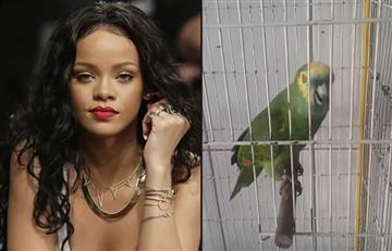 YouTube: Loro sorprende por cantar igual que Rihanna