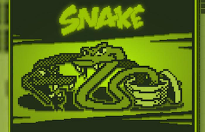 Snake. Foto: Facebook