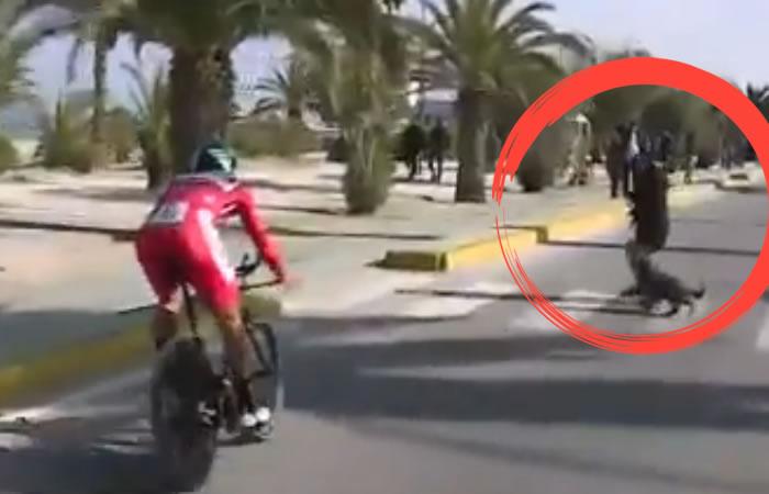Sagan casi atropella a una mujer que se atravesó, en plena contrarreloj