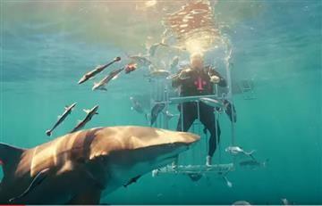 Samsung Galaxy S8 entre tiburones