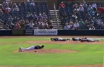 Así fue el 'ataque de abejas' en un partido de Béisbol