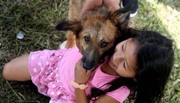 Mocoa: Animalistas se unen para ayudar a las mascotas afectadas