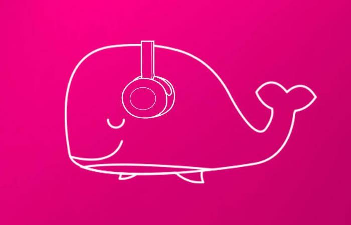 Ballena rosa. Foto: Facebook