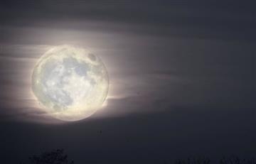 Júpiter y la Luna brindan sorprendente espectáculo nocturno