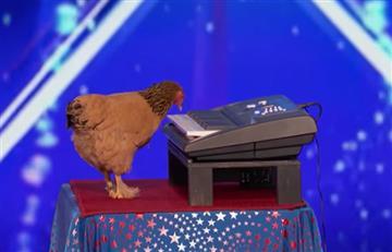 En 'America's Got Talent' sorprende la gallina que toca el piano