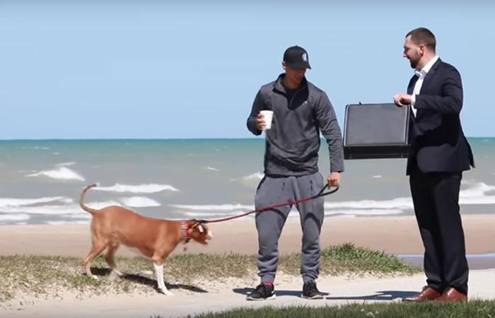¿Venderías a tu perro por 100.000 dólares? Esta cámara oculta midió el amor de los humanos por sus mascotas