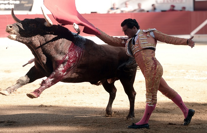 Toreo: Iván Fandiño fue alcanzado por un toro