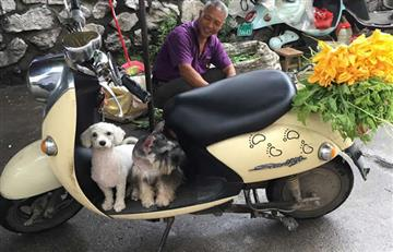 China celebra el festival de carne de perro