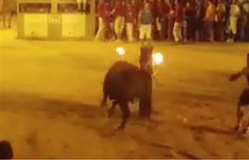 El impactante 'suicidio' de un toro al que le prendieron los cuernos como parte de una celebración