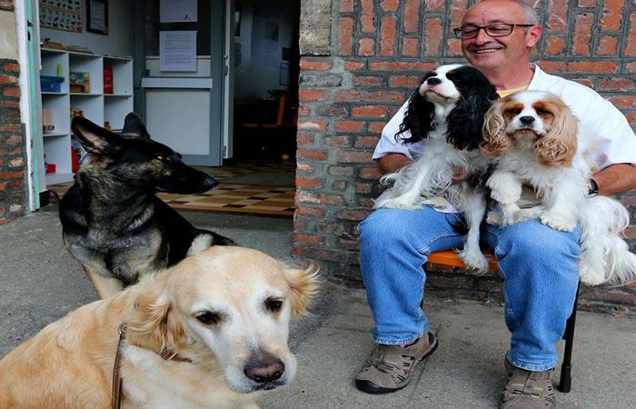 Bogotanos podrán adoptar más de 160 perros y gatos