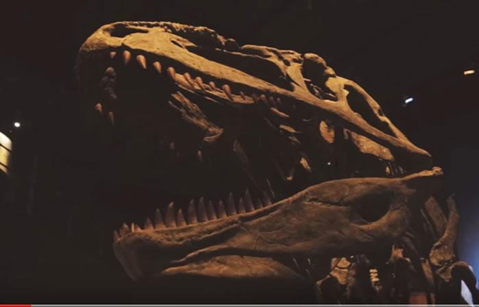 Confirman cuál fue el dinosaurio más grande que habitó en la Tierra