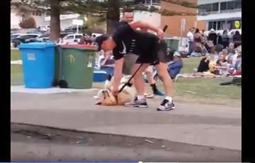 Video: Perro se hace el muerto para que su amo no se lo lleve del parque