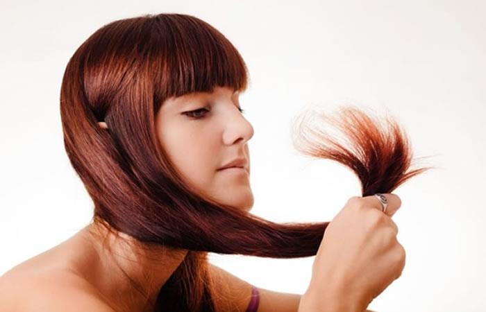 Cinco combinaciones naturales para el cuidado de tu cabello