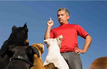 Audiolibros exclusivos para perros por César Millan