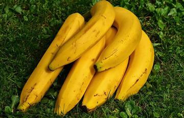 Seis beneficios del plátano maduro que NO conocías