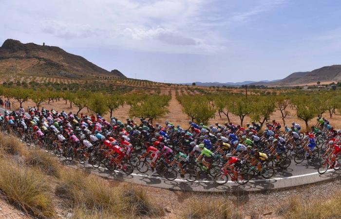 Vuelta a España: Así van los colombianos en la general tras la etapa 8