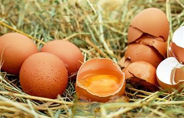 ¿Es bueno comer huevo crudo?