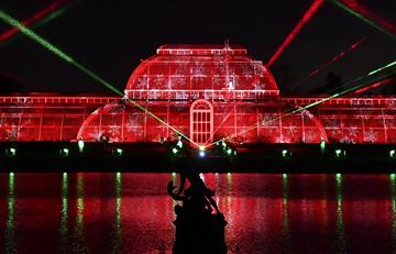 Londres: Jardines de Kew encienden la Navidad con un millón de luces