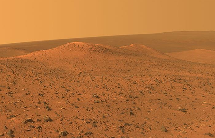 Marte: Hallan un animal adaptado a la vida de este planeta