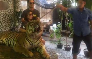 Maltrato a tigre para selfis de turistas indigna a Tailandia