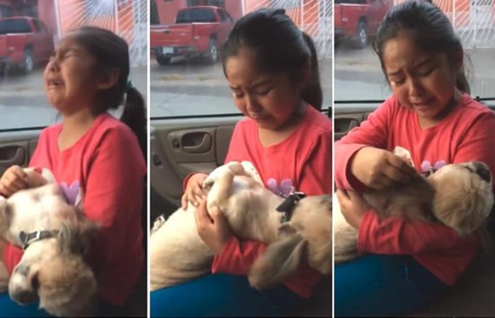 La cómica reacción de una niña que llora porque a su perro lo llevaron a la peluquería