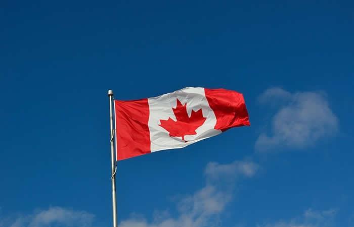 ¿Quiere trabajar en Canadá? Estas son las 50 profesiones con más ofertas