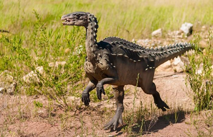 Australia: Hallan restos de un dinosaurio con tamaño de pavo