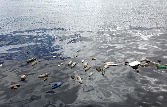 Contaminación en océanos dispara el riesgo de enfermedades en corales