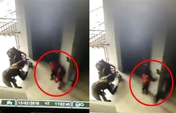 Video: Niña de 2 años 'desaparece' mientras le toman una foto