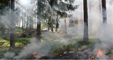 Incendio en La Macarena lleva al menos 2.500 hectáreas consumidas